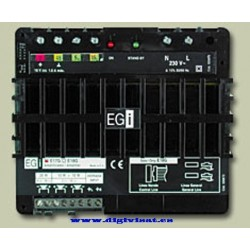 EGI E17 stereo amplifier. [E17 amp is] 139.26EUR